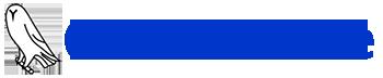 Owl Software Logo